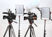 <h5>Video37</h5><p>Video37</p>